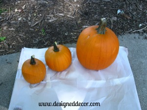 Painting Pumkins and How to use them!