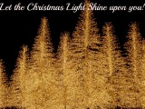 Food for Thought Friday – The ChristmasLight!